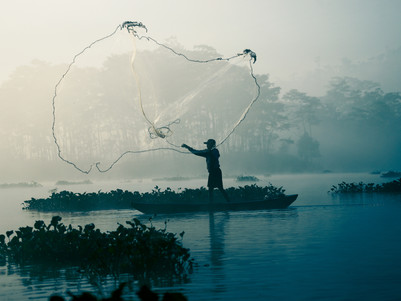 Show Me Where to Cast my Nets