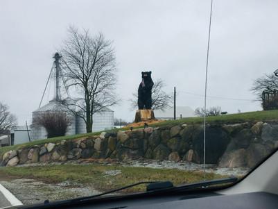Hello, Mr. Bear