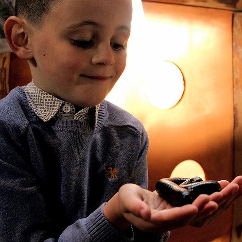 Junior Big Bug Encounter