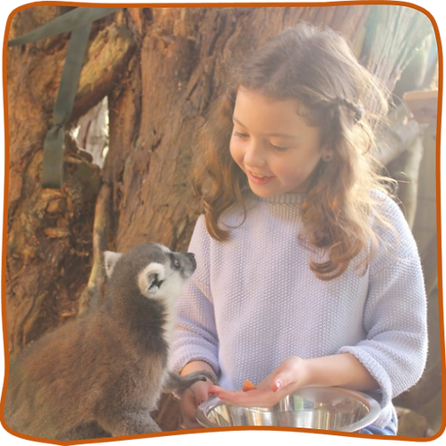 Junior Zookeeper Experience