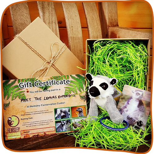 Meet the Lemurs with Gift Pack