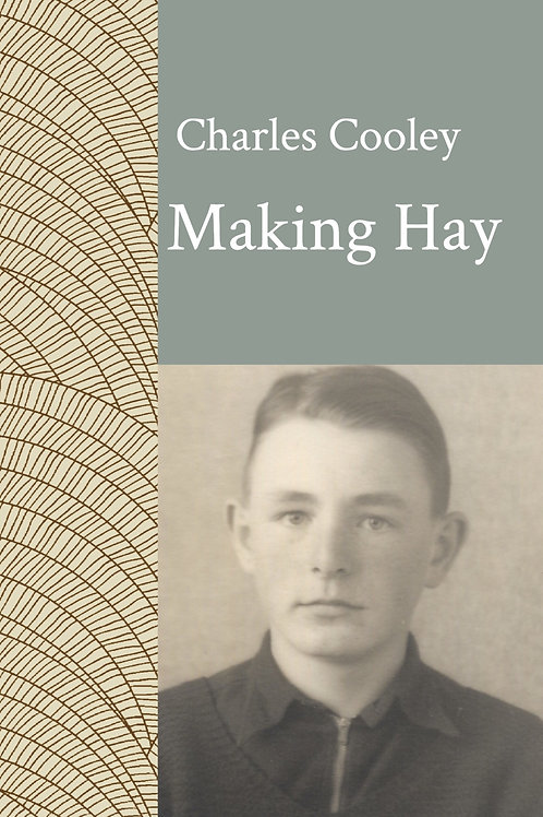 Making Hay ebook