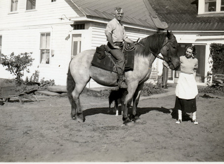 John Was Good With Horses