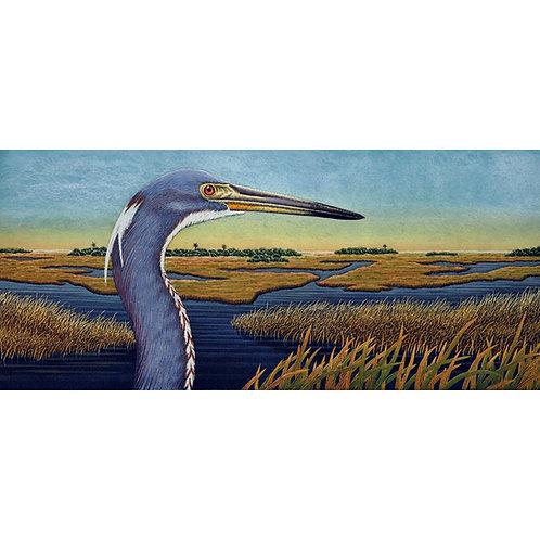 """Tri Colored Heron Vista"""