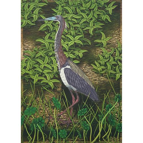 """Tri-Colored Heron"""