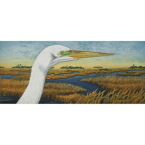 """""""Great Egret Vista"""""""