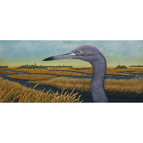 """Little Blue Heron Vista"""