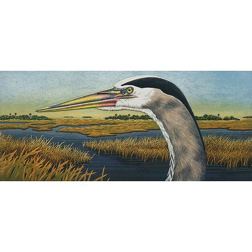 """Great Blue Heron Vista"""