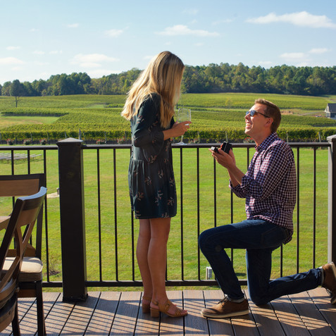 Surprise Proposals
