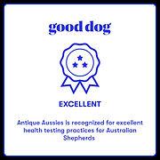 Good dog Excellence.jpg