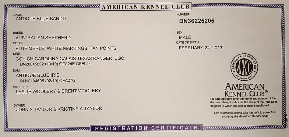 Bandits AKC papers.jpg