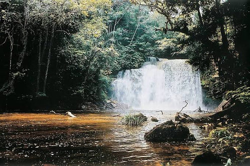 The Waterfall de Figueiredo - US$55