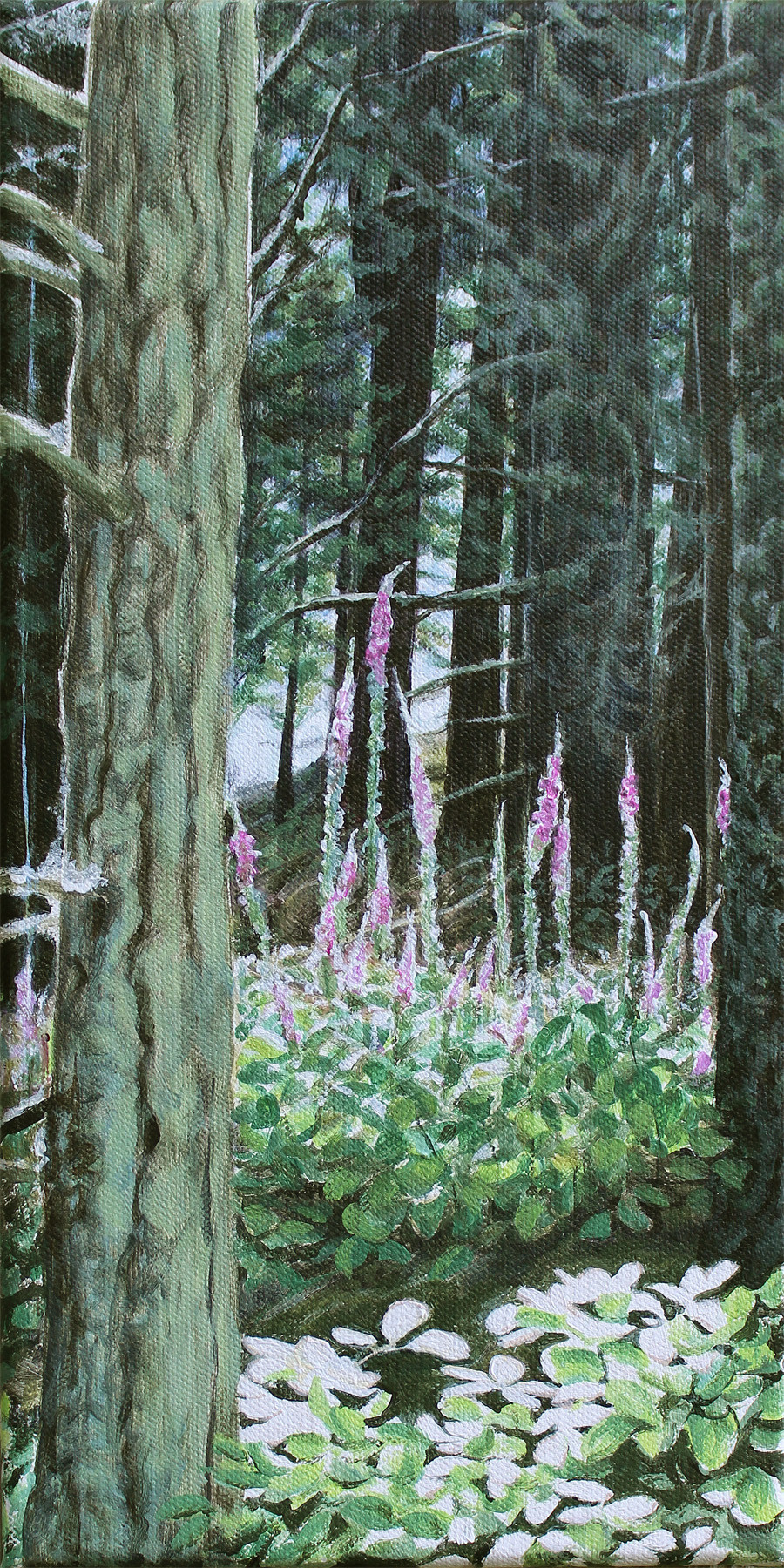 """Foxglove Firs  12"""" x 6"""" acrylic on canvas"""