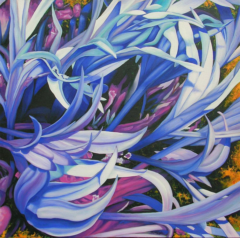Centaurea Waves