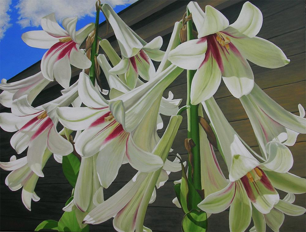Lily Giganteum