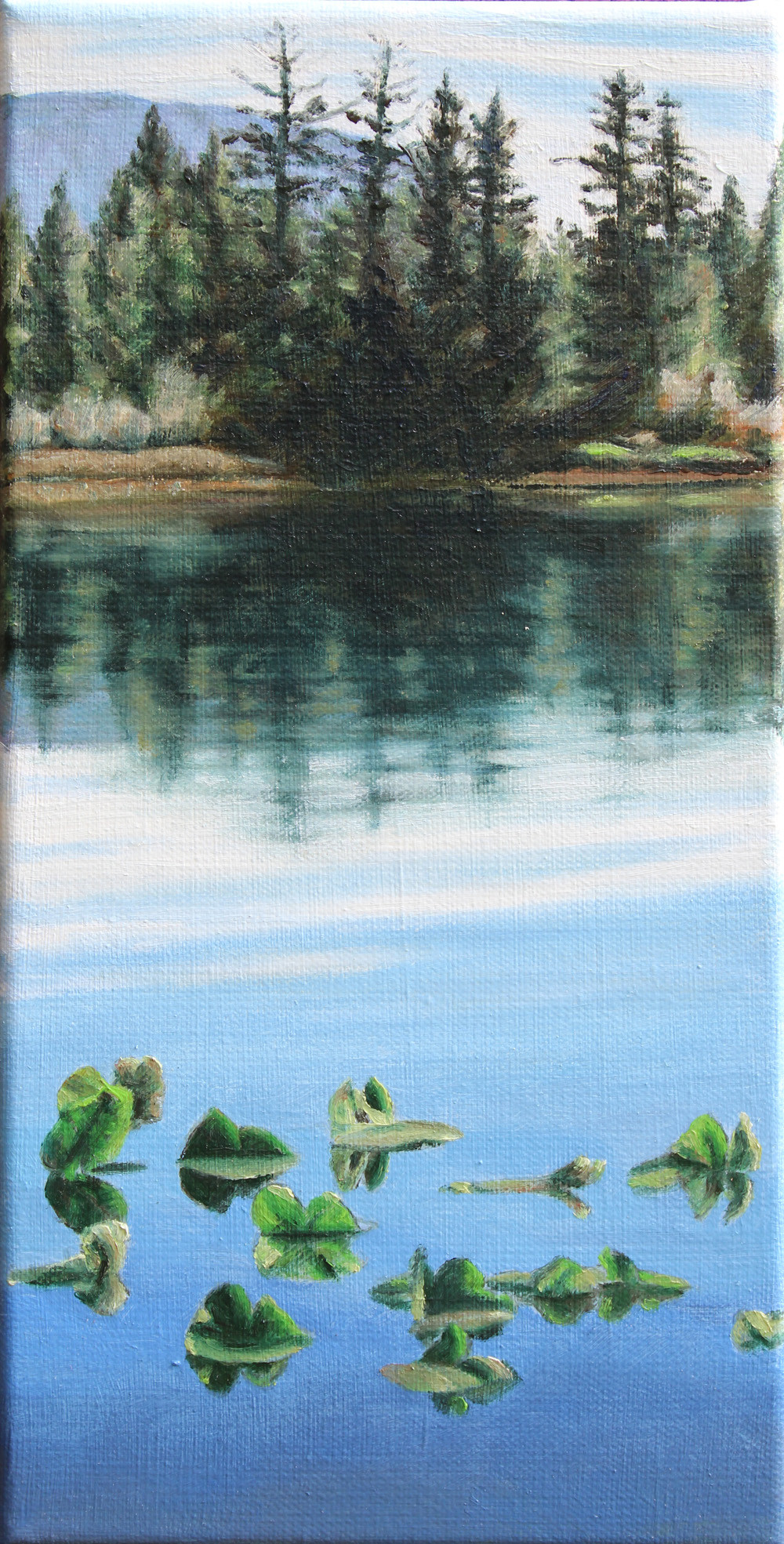 "Beach Paintbrush 24"" x 24"" oil on canvas"
