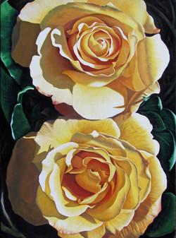Yellow Rose #8