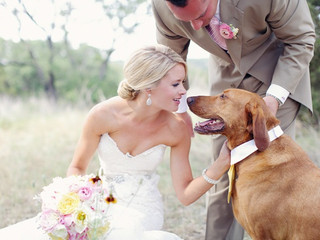 How To Include Your Dog In Your Wedding Day