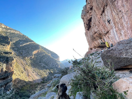 Rock Climbing in Cacín - the best kept secret of south of Spain?