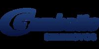 Logo Gambatto Seminovos Passo Fundo