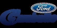 Logo Gambatto Ford Passo Fundo