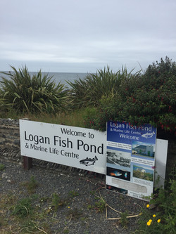 Logan Fish Pond, Port Logan