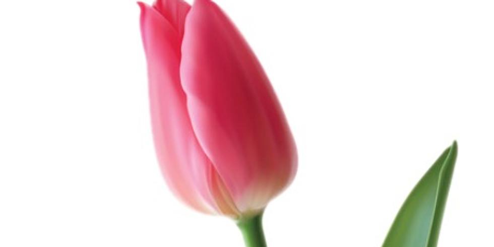 Simple Flower - A Virtual Class