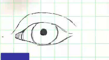 Eye Study #!