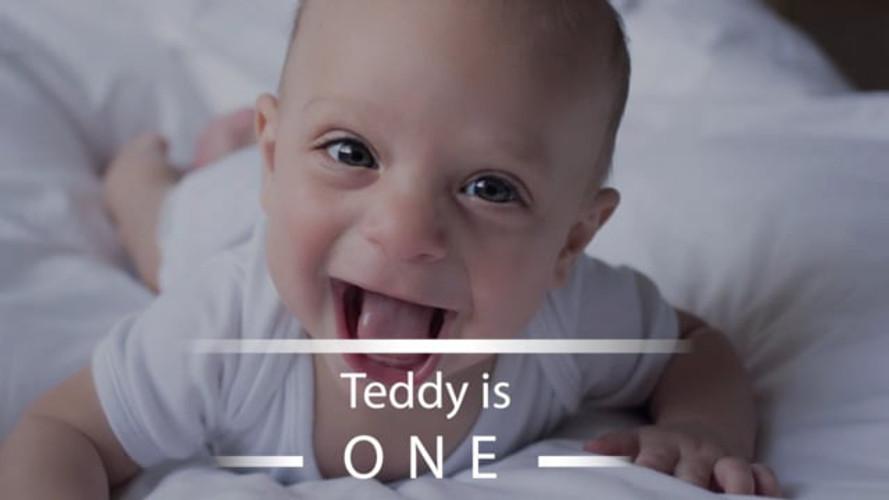 Teddy first year