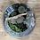Thumbnail: Terrarium cactus plantes grasses