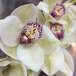 Élysée fleurs