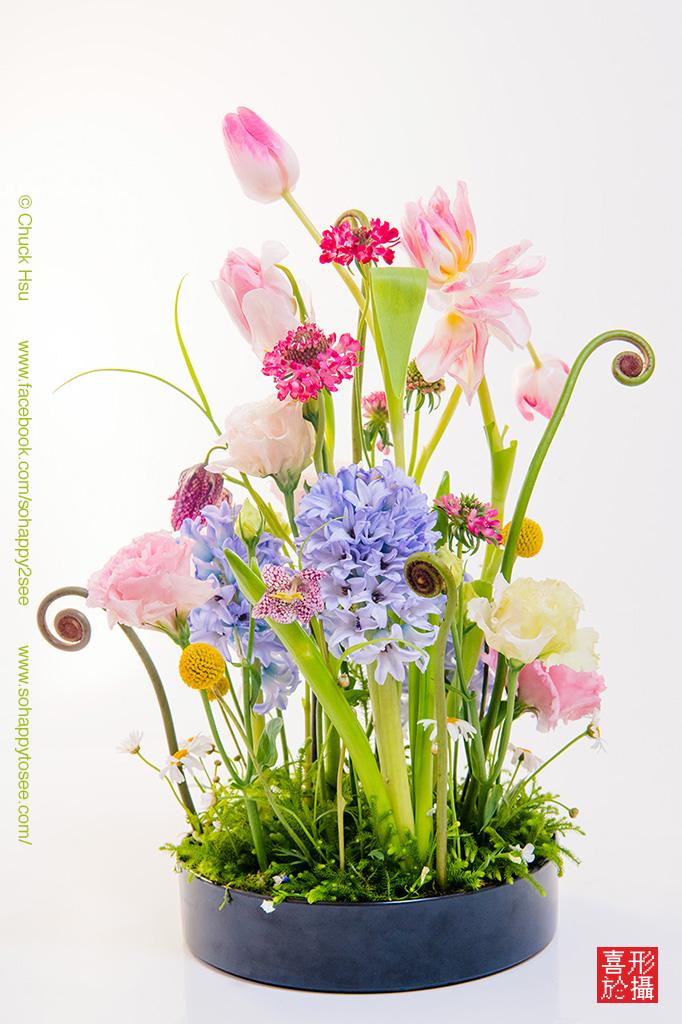 Spring bloom flower