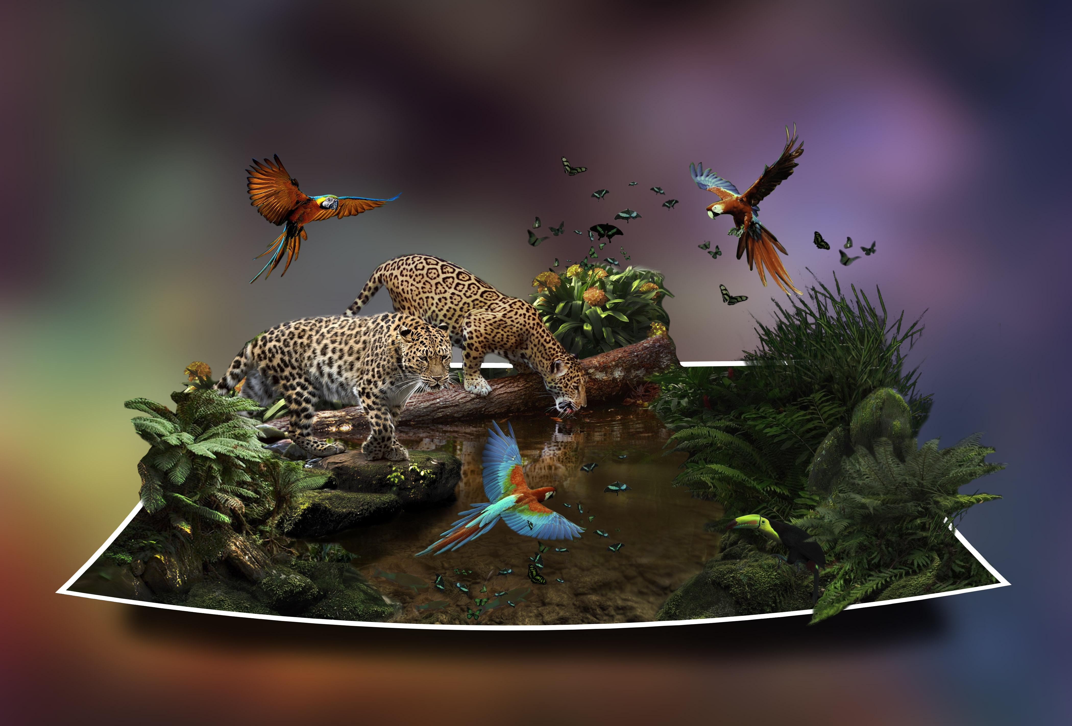 Papper Jungle