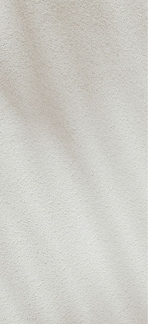 creative plant shadow stone wall.jpg