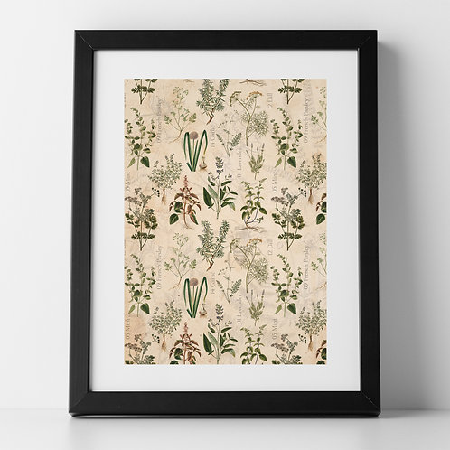 The Herb Garden A4 Unframed Poster Print