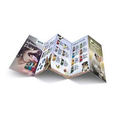 Brochure 5 lipatan