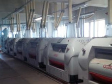 PT. Eastern Pearl Flour Mills, Makassar
