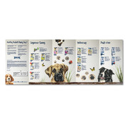 Brochure Product Catalog