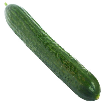 Cucumber - Large Single