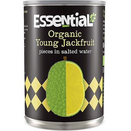 Jackfruit in Salted Water