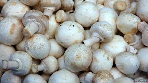 Closed Cup Mushrooms 300g