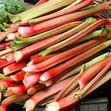 Rhubarb - Bunch of 4 - Locally Grown
