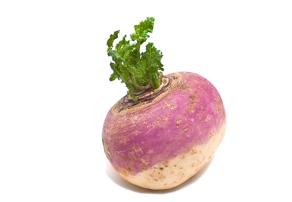 Turnip, single