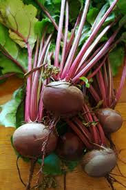 Bunch of Beetroot - Locally Grown