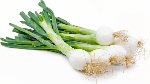 Spring onions - approx 160g bunch