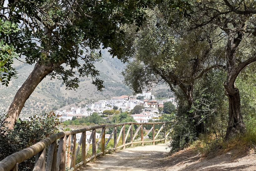 Path between Canillas and Competa