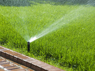Winter is a coming - is your irrigation set right?