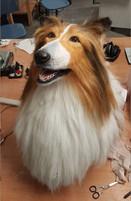 Lassie 1.jpg