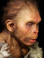 Neanderthaler Startseite.jpg