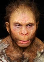 Neanderthaler B1.jpg